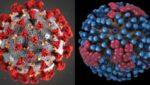 Influenca vs covid