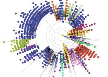 Përse shërben njohja e gjenomit të korona-virusit dhe mutacioneve të tij?