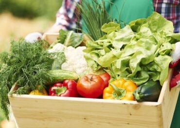 Efektet e pasigurisë ushqimore te fëmijët